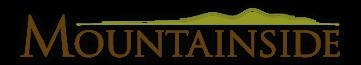 Mountanside Detox